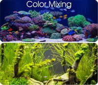 Color management / colour mixing