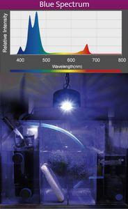 Blaues Spektrum