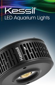 As a leading company in aquaristics since 1960, TUNZE® Aquarientechnik is delighted  about the cooperation with the pioneering market leader in biotope illumination DiCon - Kessil®.