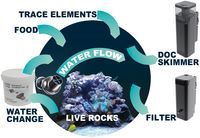 Water change with Comline® Reefpack: