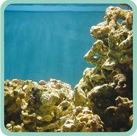 Olas naturales en acuario